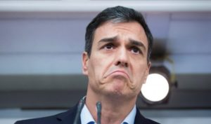 Cien días de honradez (¡y ni uno más!) Pedro Sanchez